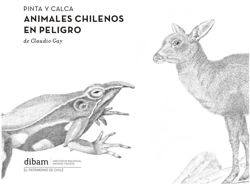 Dibujo De Chilena Para Colorear: Chile Para Niños